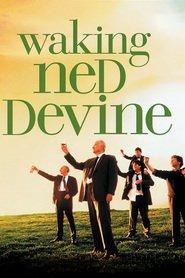 Waking Ned Devine